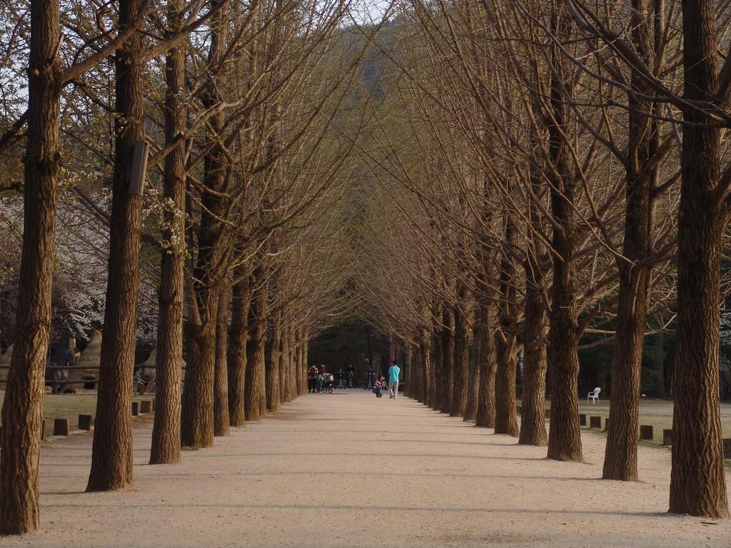 All About South Korea Tempat Wisata Paling ROMANTIS DI